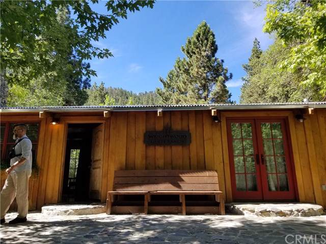 26000 Big Pines Hwy, Wrightwood, CA 93544 (#WS19283193) :: J1 Realty Group