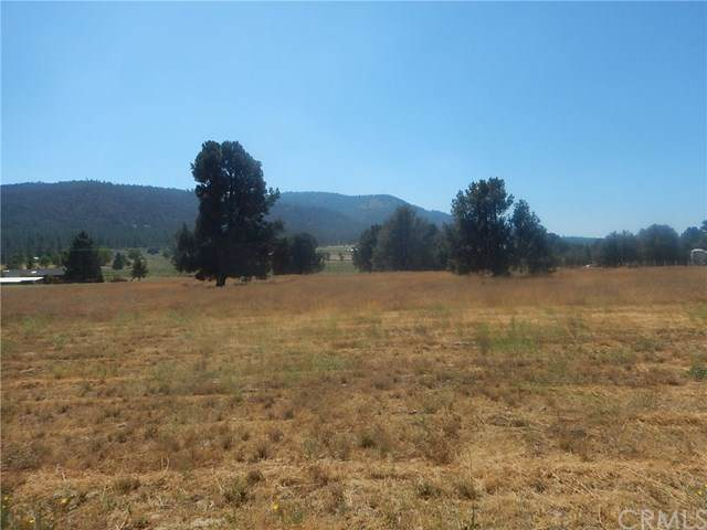 0 Foxtail Ranch Rd, Frazier Park, CA 93225 (#CV19227860) :: Wendy Rich-Soto and Associates