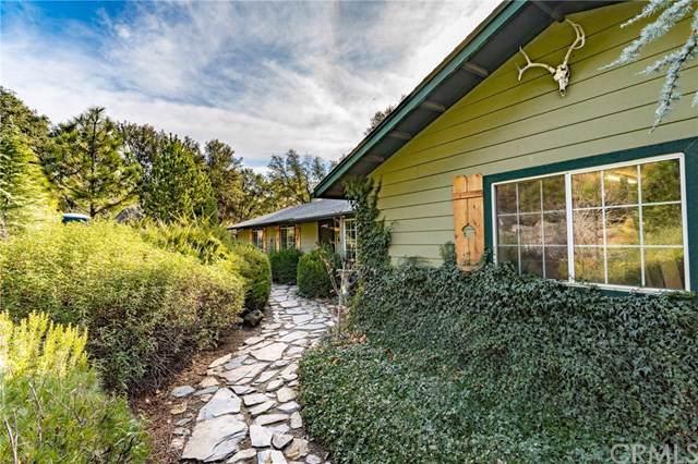 4266 Buckeye Creek Road, Mariposa, CA 95338 (#MP19278685) :: Re/Max Top Producers