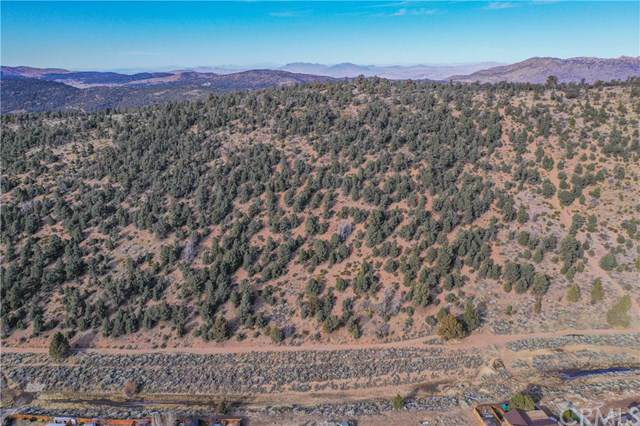 0 Lakewood, Big Bear, CA 92314 (#EV19284668) :: Sperry Residential Group