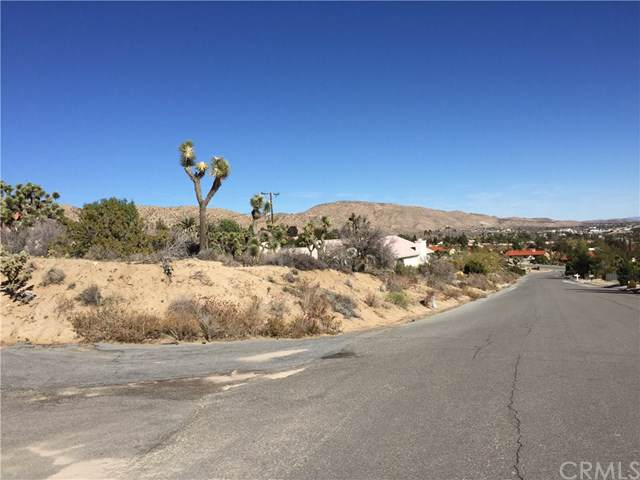 7663 Ventura Avenue, Yucca Valley, CA 92284 (#JT19285069) :: Sperry Residential Group