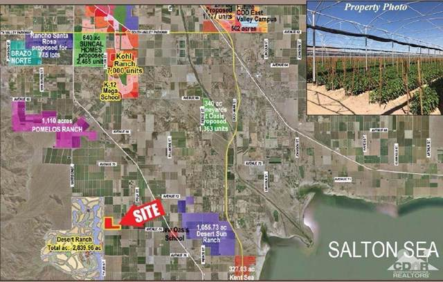 0 Avenue 74, Thermal, CA 92274 (#219035777DA) :: Sperry Residential Group