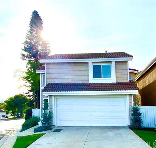 46 La Costa Court, Laguna Beach, CA 92651 (#OC19285253) :: Sperry Residential Group