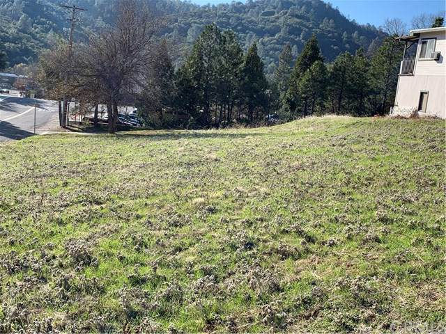 0 12th Street, Mariposa, CA 95338 (#MP19286902) :: Sperry Residential Group