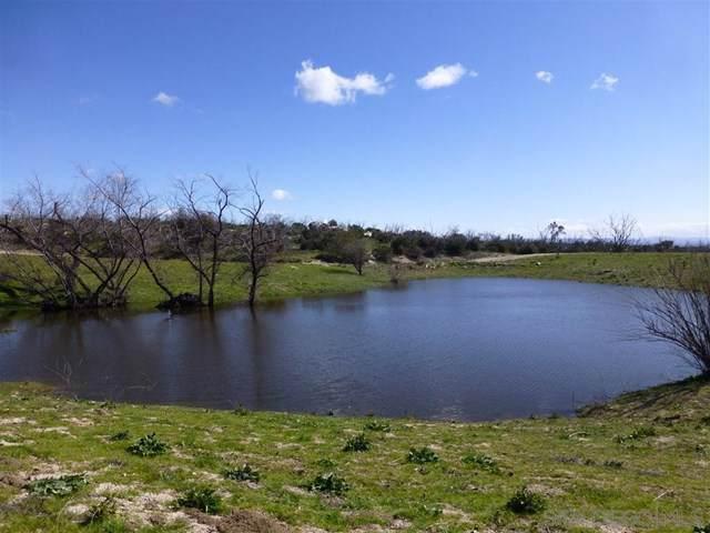 1262 Tierra Del Sol Rd, Boulevard, CA 91905 (#200000053) :: Sperry Residential Group