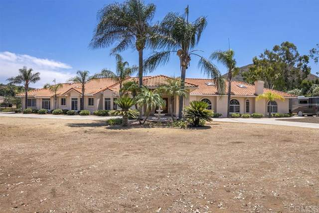 14651 Presilla Dr, Jamul, CA 91935 (#200000223) :: J1 Realty Group