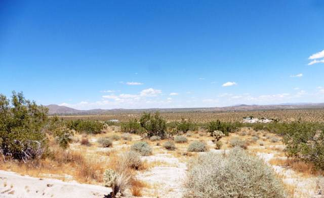 0 Sutton Avenue, Joshua Tree, CA 92252 (#JT20000594) :: Sperry Residential Group