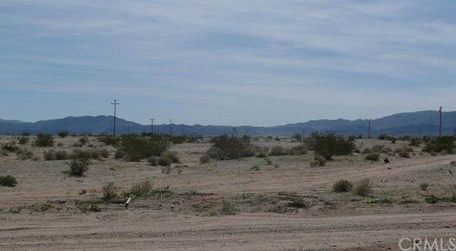 0 Wilson, 29 Palms, CA 92277 (#JT20000636) :: Sperry Residential Group