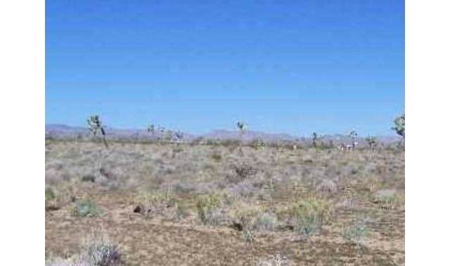 0 El Rey, Joshua Tree, CA  (#JT20000664) :: Sperry Residential Group