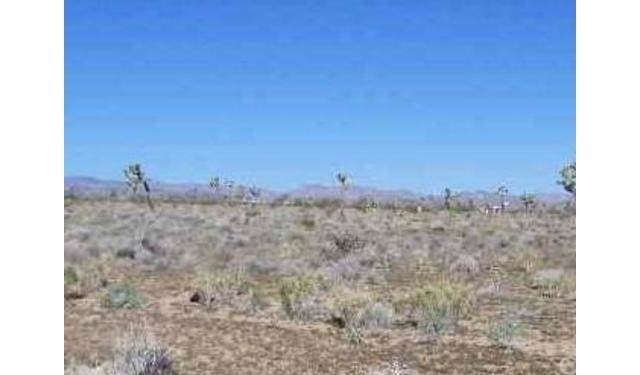 0 Brant Cross, Joshua Tree, CA  (#JT20000708) :: Allison James Estates and Homes