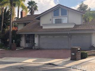 433 S Oakgrove Circle, Anaheim Hills, CA 92807 (#OC19286714) :: Sperry Residential Group
