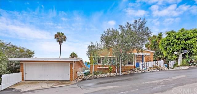 251 Highland Road, Laguna Beach, CA 92651 (#LG20001092) :: Doherty Real Estate Group