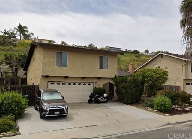 3821 Sierra Morena Avenue, Carlsbad, CA 92010 (#ND20001079) :: Sperry Residential Group