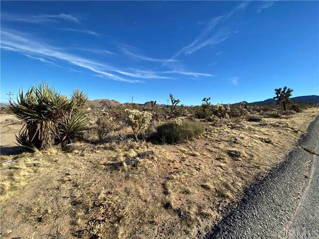 6925 Sunnyhill Road, Joshua Tree, CA 92252 (#JT20000869) :: Allison James Estates and Homes