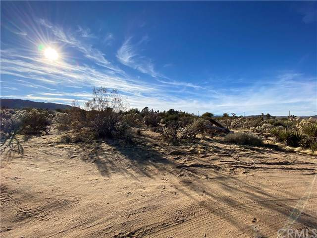 6947 Sunnyhill Road, Joshua Tree, CA 92252 (#JT20000845) :: Allison James Estates and Homes