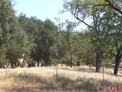 8 Championship Lane, Templeton, CA  (#NS20001610) :: Sperry Residential Group