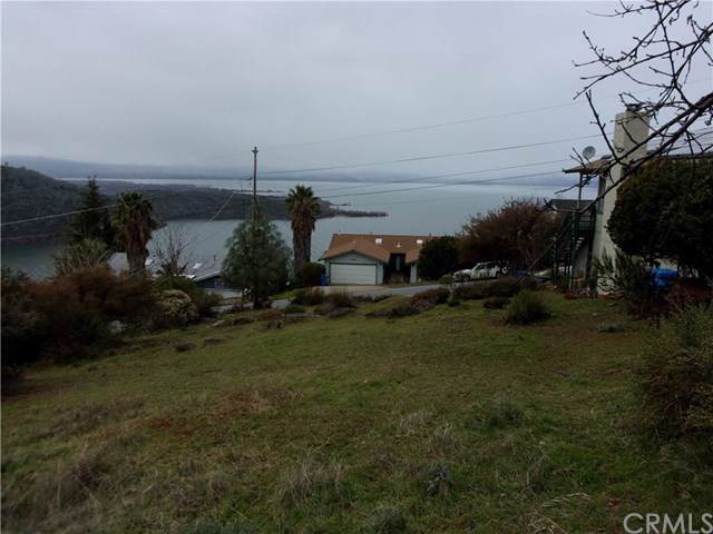 3216 Westridge Drive, Kelseyville, CA 95451 (#LC20001936) :: The Bashe Team
