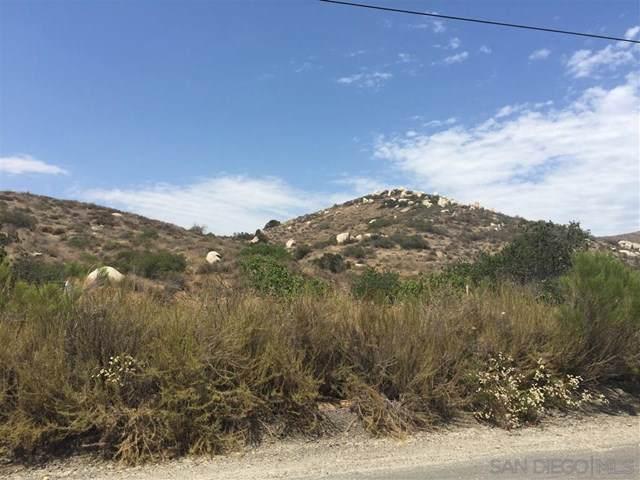 5900 Stallion Oaks Road - Photo 1
