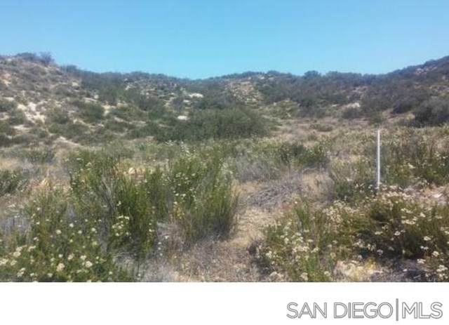 0 Lee Trail, Aguanga, CA 92536 (#200000811) :: Twiss Realty