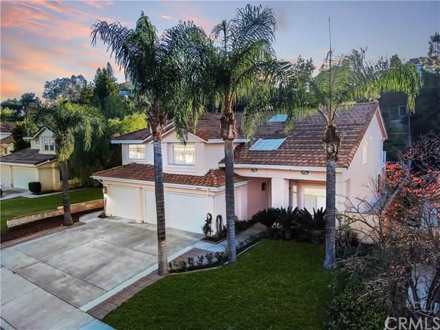 40585 Calle Medusa, Temecula, CA 92591 (#SW20002317) :: Z Team OC Real Estate