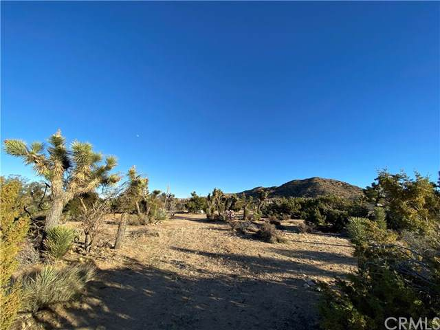 8028 Hopi Trail, Yucca Valley, CA  (#JT20003266) :: Sperry Residential Group