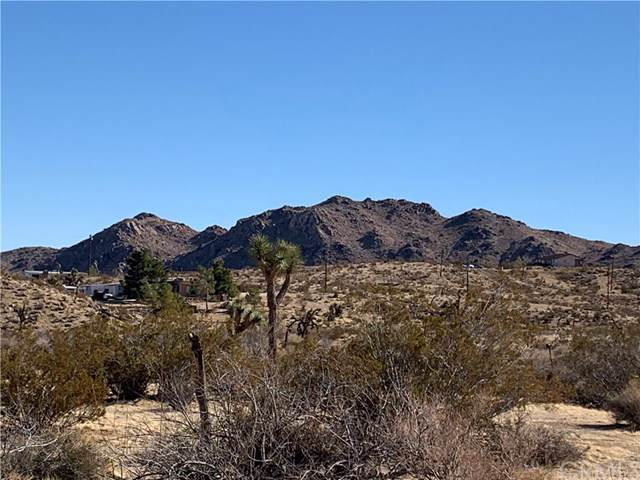 0 Bonita, Yucca Valley, CA  (#JT20003329) :: Sperry Residential Group