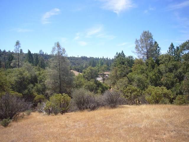 0 Soulsbyville Road, Outside Area (Inside Ca), CA 95372 (#ML81778384) :: Sperry Residential Group