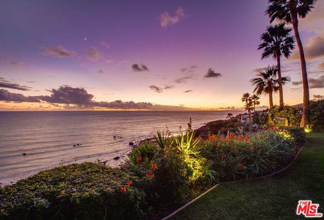 32802 Pacific Coast Highway, Malibu, CA 90265 (#20541862) :: Allison James Estates and Homes