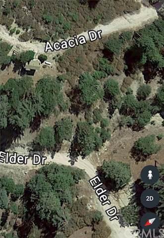 0 Elder, Cedar Glen, CA  (#EV20005210) :: Allison James Estates and Homes