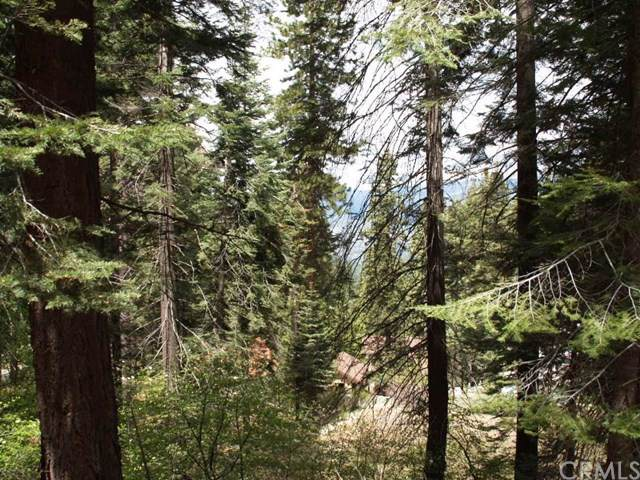 7413 Henness Ridge Road, Yosemite, CA 95389 (#FR20005571) :: Twiss Realty
