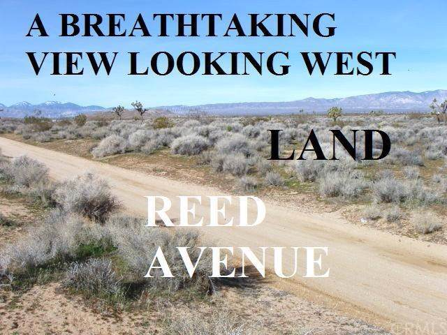 0 Reed Avenue E, Mojave, CA 93501 (#WS20005629) :: RE/MAX Parkside Real Estate