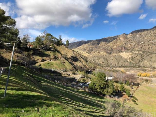 0 Rim Canyon/ Mt. Gleason Ave., Sunland, CA  (#SR20000775) :: Sperry Residential Group