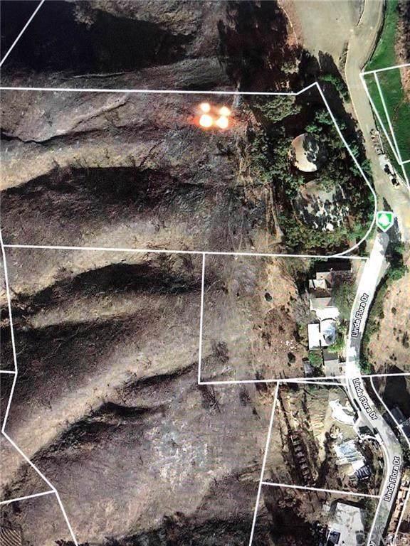 100 Flora Linda Drive, Bel Air, CA  (#PW20006325) :: Powerhouse Real Estate