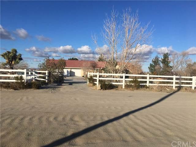 4880 La Mesa Road, Phelan, CA 92371 (#WS20006780) :: Sperry Residential Group
