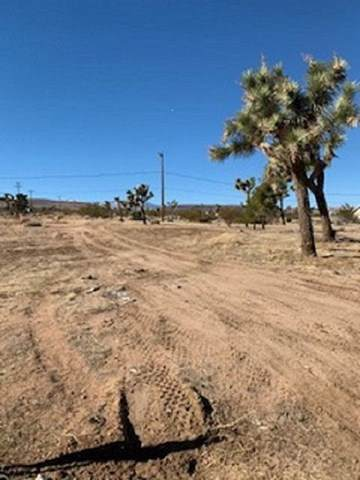 3664 Ruidosa Avenue, Yucca Valley, CA 92284 (#219036582PS) :: Sperry Residential Group