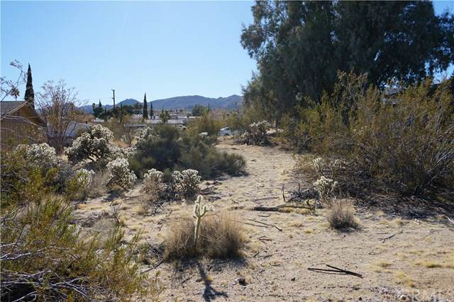 61620 Valley View Drive, Joshua Tree, CA 92252 (#JT20003862) :: Allison James Estates and Homes