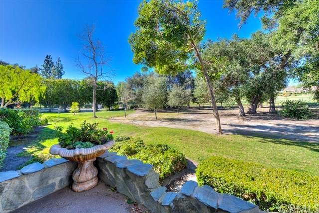 33 Oak Knoll, Coto De Caza, CA 92679 (#OC20006481) :: Allison James Estates and Homes
