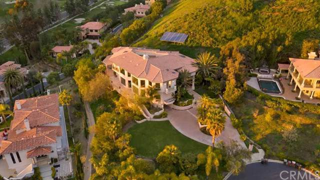 30728 Paseo Elegancia, San Juan Capistrano, CA 92675 (#OC20007329) :: Cal American Realty