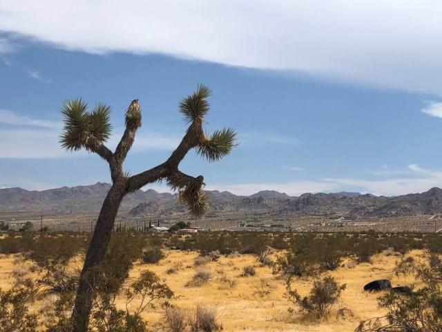 604 Gold Nugget Road, Joshua Tree, CA 92252 (#219036648PS) :: Allison James Estates and Homes