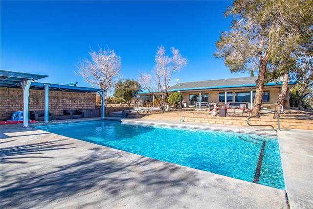 3900 Avenida Tortuga, Joshua Tree, CA 92252 (#JT20005731) :: Allison James Estates and Homes