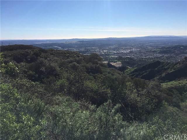 0 Sycamore Canyon, San Dimas, CA  (#CV20007820) :: RE/MAX Estate Properties
