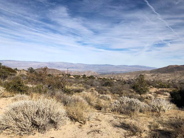 Mountain Park Road, Mountain Center, CA 92561 (#219036698DA) :: eXp Realty of California Inc.