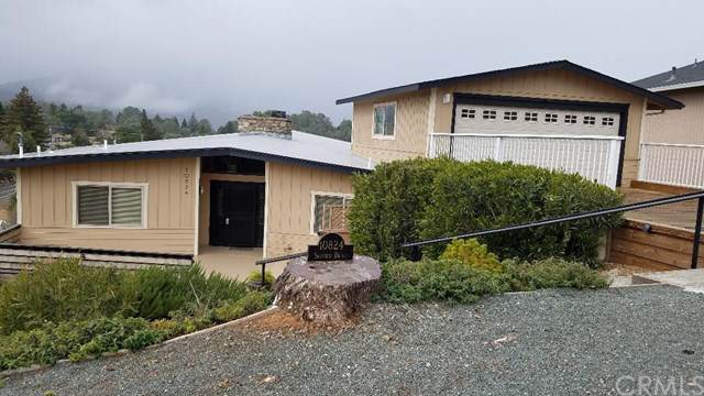10824 Skyview, Kelseyville, CA 95451 (#LC20007842) :: The Laffins Real Estate Team