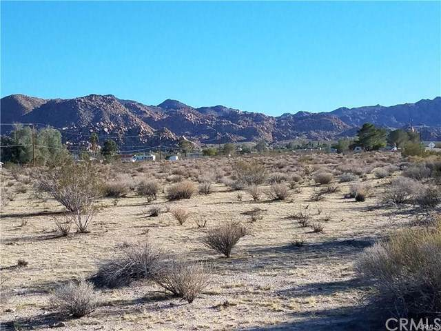 6561 Cascade Road, Joshua Tree, CA  (#JT20007874) :: Berkshire Hathaway Home Services California Properties