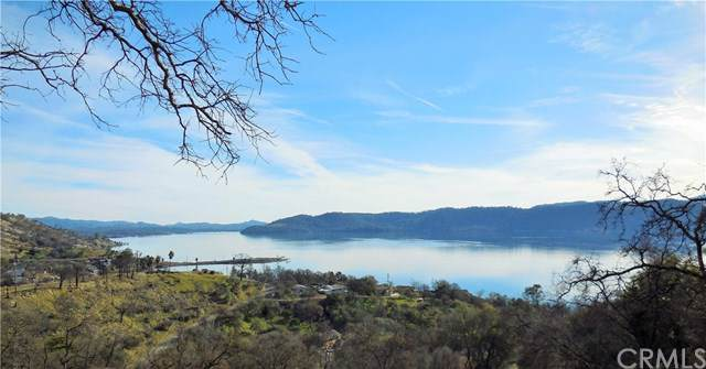 3095 Oak Crest Drive, Clearlake, CA 95422 (#LC20002935) :: Twiss Realty