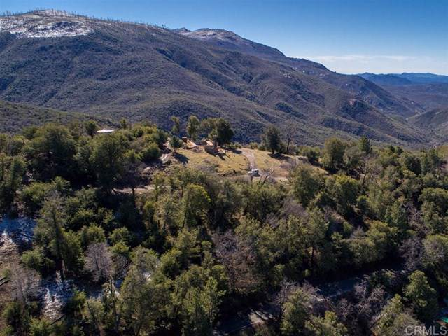 8023 High Hill Rd, Julian, CA 92036 (#200002090) :: eXp Realty of California Inc.