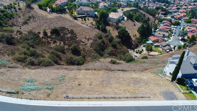 1729 Derringer Lane, Diamond Bar, CA  (#OC20008222) :: RE/MAX Empire Properties