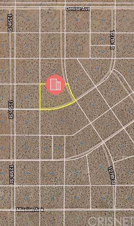0 127th Street, Mojave, CA 93501 (#SR20008840) :: RE/MAX Parkside Real Estate