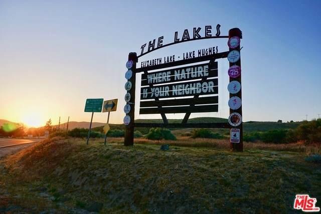 13249 Johnson Road, LEL - Lake Elizabeth, CA 93532 (#20543590) :: Realty ONE Group Empire