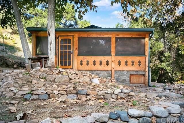 5 Hot Springs Canyon Road, San Juan Capistrano, CA 92675 (#LG19284107) :: Team Tami